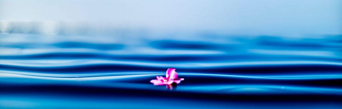 Il beneficio principale della meditazione